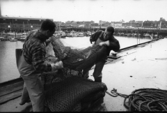 Hartlepool Fish Quay - Nets